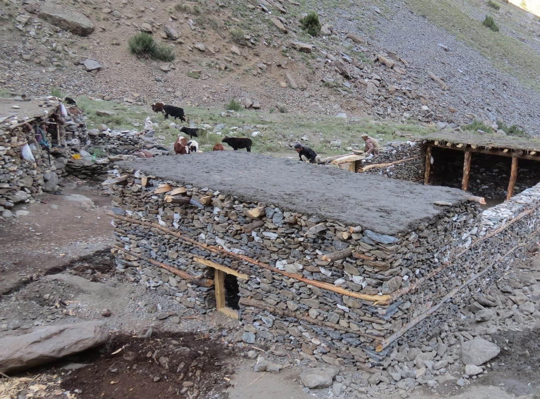a predator-proof corral can keep livestock safe