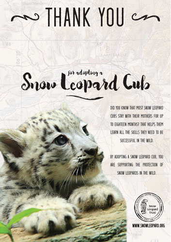 Your Snow Leopard Holiday Gift Guide