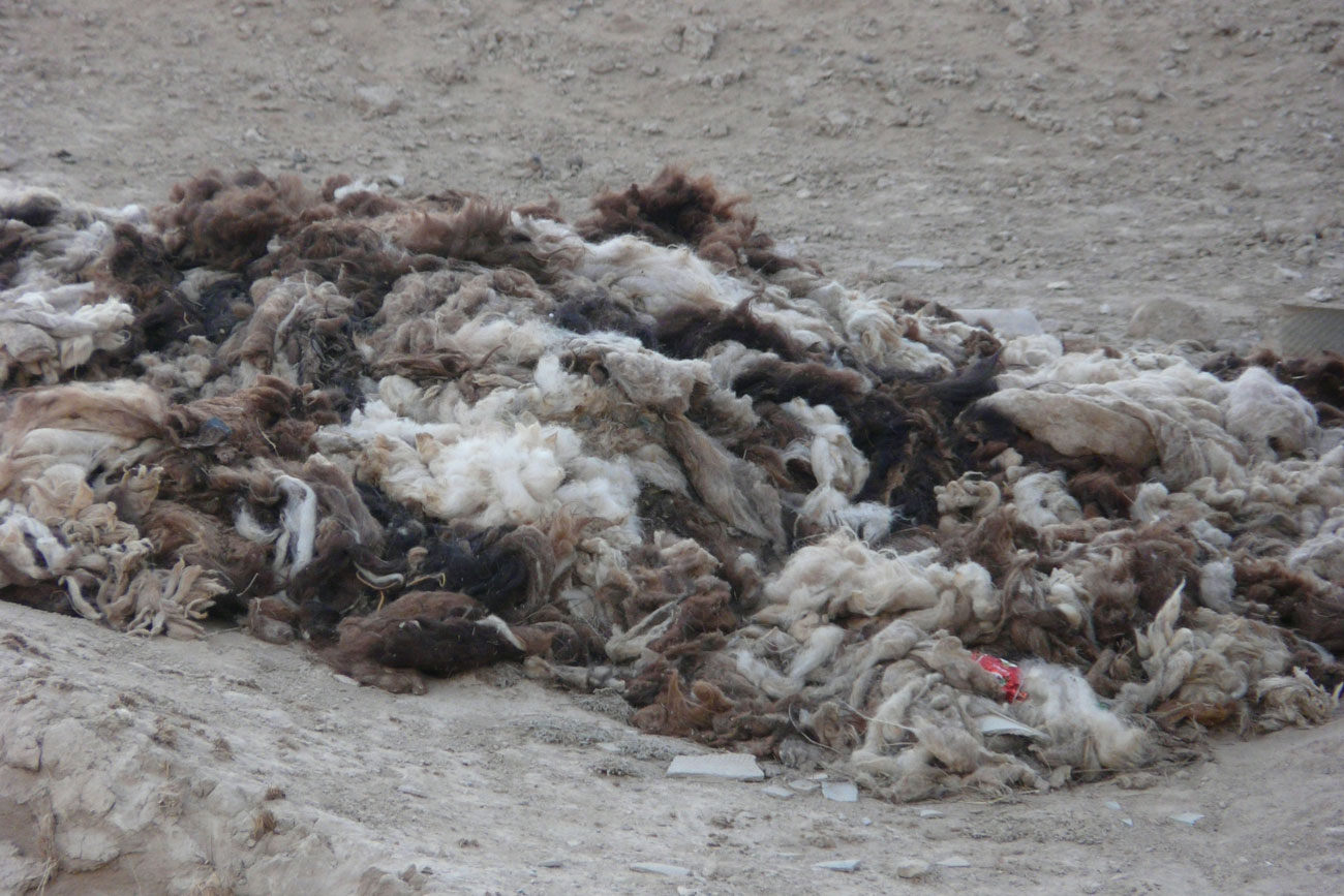 Piles of raw wool used to be lying around unused in Ak-Shiyrak. Now, this resource is being used.